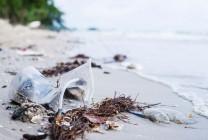 Las consecuencias de usar plástico